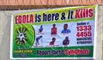 Số người tử vong do Ebola tăng đột biến