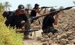 Iraq, Iran kêu gọi quốc tế hợp tác chống IS