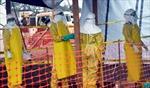 LHQ: Lệnh cấm bay cản trở ứng phó dịch Ebola
