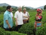Tổng Bí thư Nguyễn Phú Trọng thăm, làm việc tại tỉnh Tuyên Quang
