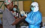 Mỹ chuẩn bị thử nghiệm vaccine Ebola trên người