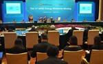 APEC hướng tới đa dạng hóa nguồn năng lượng