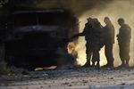 OSCE: Lệnh ngừng bắn tại Ukraine vẫn được tuân thủ
