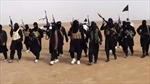 Phản ứng quốc tế về chiến lược đối phó IS của Mỹ