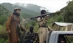Thủ lĩnh cấp cao Taliban bị tiêu diệt