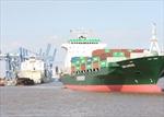 Rà soát các phụ phí tại cảng biển