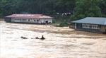 Lũ lớn trên sông Lô, báo động trên cấp 2