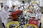 Việt Nam xuất khẩu cá hàng đầu sang Colombia