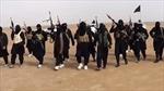 LHQ liệt nhiều tay súng nước ngoài vào danh sách đen