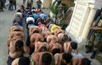 Liban bắt 450 nghi can phiến quân trên biên giới Syria