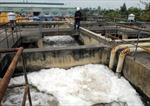 Nước thải không đạt chuẩn, doanh nghiệp bị phạt 300 triệu đồng
