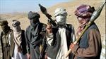 Taliban ở Pakistan tuyên bố trung thành với IS