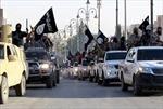 IS chiếm thêm một thị trấn ở Iraq