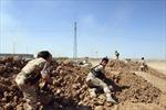 IS chiếm ngọn núi chiến lược của người Kurd