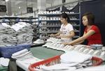Giúp da giày xuất khẩu vượt rào cản kỹ thuật
