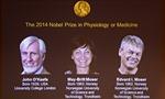 'Hệ thống định vị trong não' giành Nobel Y học