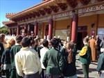 'Trồng người' tại Australia: Giáo dục tự thân