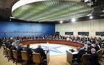 Cựu Tư lệnh NATO: Liên minh không cần Ukraine