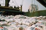 Xuất khẩu gạo năm 2015 sẽ khó khăn