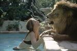Cuộc sống thú vị với sư tử ngay giữa New York