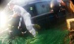 Hàn Quốc bắt ba ngư dân Trung Quốc tấn công cảnh sát biển