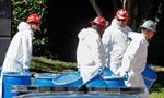 """Nước Mỹ """"nóng"""" với dịch Ebola"""