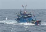 Tìm thấy 7 thuyền viên gặp nạn trên vùng biển Cà Mau