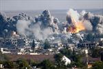 EU cấm xuất khẩu nhiên liệu máy bay phản lực cho Syria