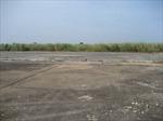Cần 250 triệu USD xử lý đất nhiễm dioxin ở Biên Hòa