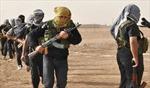 Cuộc chiến chống IS của người Kurd ở Syria