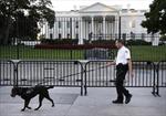 Khuyển của mật vụ Mỹ khống chế kẻ đột nhập Nhà Trắng
