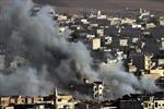 Liên quân không kích mỏ dầu ở Đông Syria