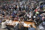 Phiếu bầu tại Ukraine giá bao nhiêu?