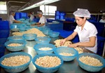 Xuất khẩu nông lâm thủy sản tăng 11,2%