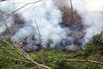 Mỹ: Nham thạch đe dọa cuộc sống hàng trăm cư dân Hawaii