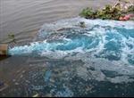 Để vỡ hồ nước thải, doanh nghiệp bị phạt 350 triệu đồng