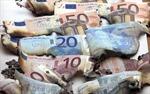 Khu vực đồng Euro: Vấn đề kinh tế lớn nhất của thế giới