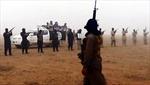 Chiến binh nước ngoài gia nhập IS 'nhiều chưa từng thấy'