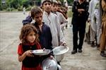 Thế giới lãng phí 1/3 sản lượng lương thực mỗi năm