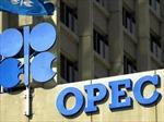 OPEC dự báo nhu cầu năng lượng toàn cầu tăng mạnh