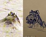 Bằng chứng 'quái vật hồ Loch Ness' tồn tại?