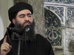 Iraq xác nhận thủ lĩnh IS bị thương do Mỹ không kích