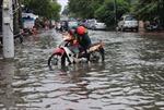 Triều cường gây ngập toàn tuyến ven biển Cà Mau