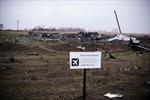 Hà Lan tưởng niệm các nạn nhân máy bay MH17