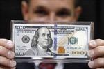 USD tăng giá có thể tái cân bằng kinh tế toàn cầu