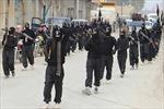 Không có dấu hiệu Al-Qaeda và IS lập liên minh