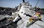 Bắt đầu di chuyển xác máy bay rơi MH-17