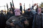 Nhật Bản và Jordan nhất trí tăng cường hợp tác chống IS