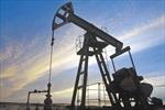 Venezuela để ngỏ khả năng giảm sản lượng dầu mỏ