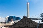 Đức chịu sức ép đóng cửa nhà máy điện than